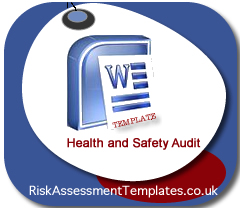 health and safety audit template .
